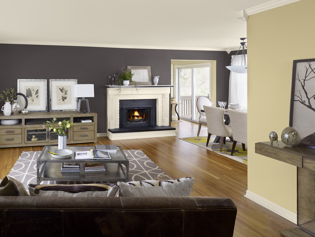 Home Living Room Paint Ideas