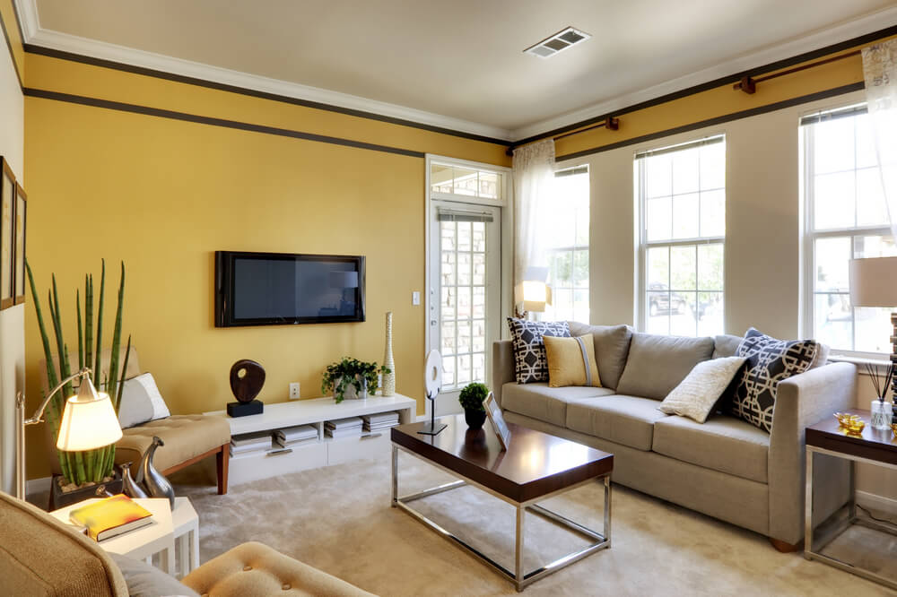 Living Room Colors Accent
