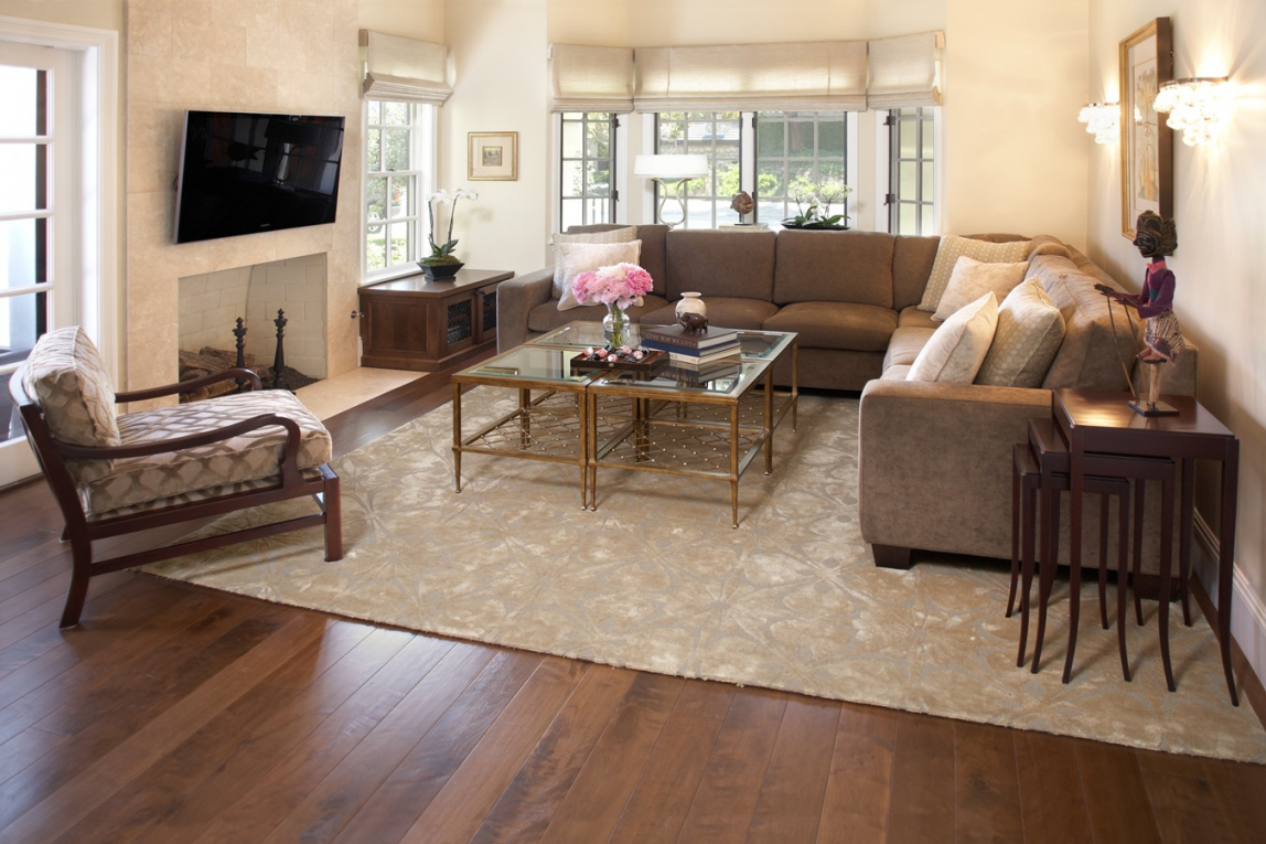 Living Room Rugs Ideas